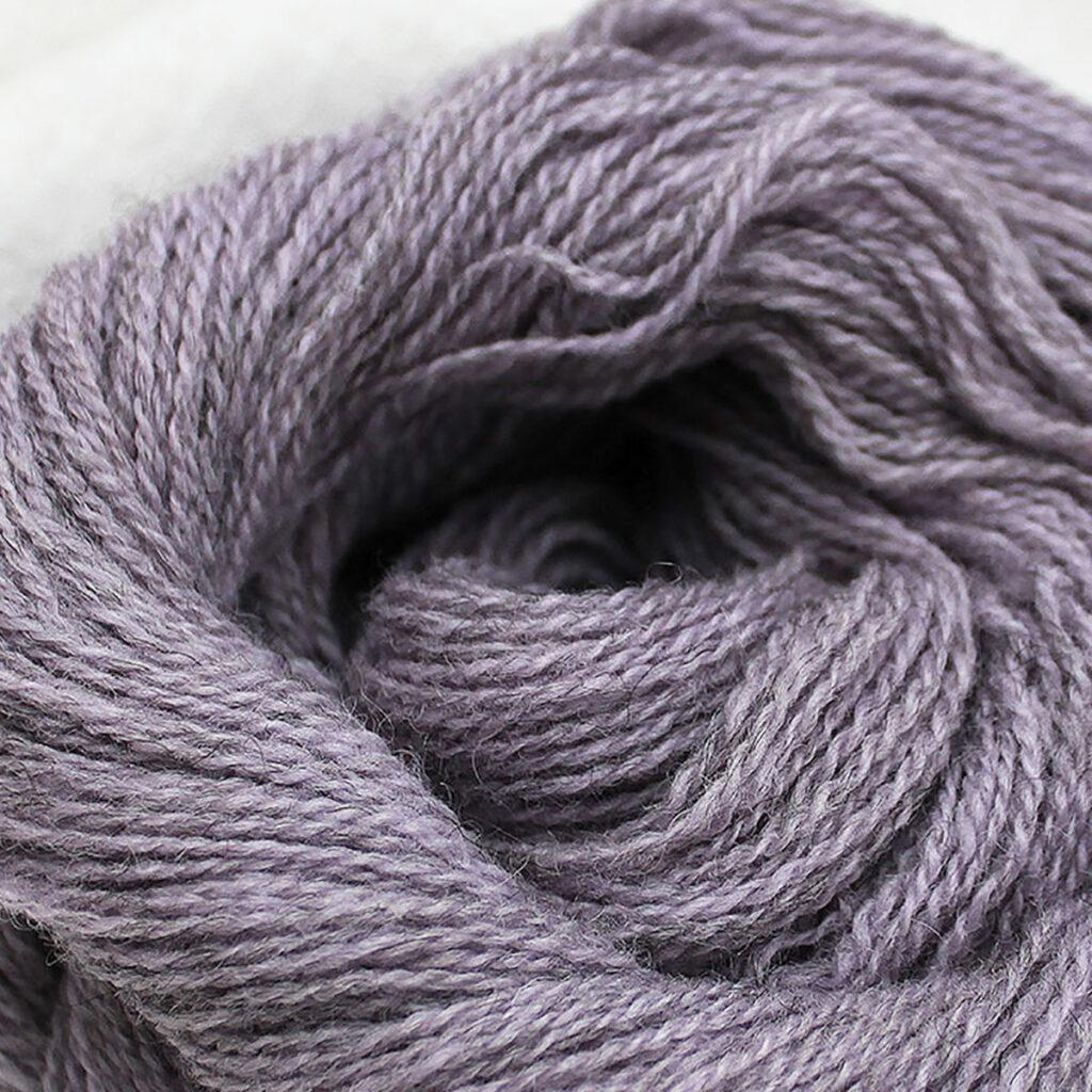 Lavendel-closeup